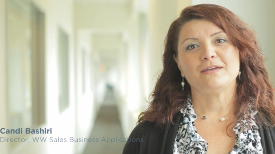 Clari Success - Candi Bashiri, Director of WW Sales Operations at WindRiver